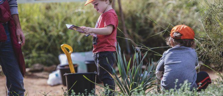 פעילות לילדים בגני יהושע